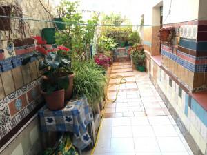 Planta baja en el centro de Sant Pere de Ribes en venta...