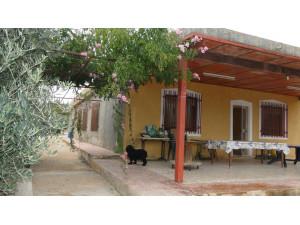 Casa de campo con 7 dormitorios y nave en Carrús
