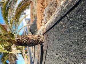 Suelo urbanizable en Venta en Tuineje Las Palmas