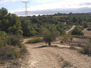 Suelo rústico en Venta en Vilosell, El Lleida