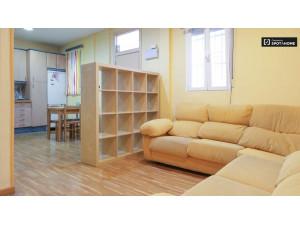Apartamento de 1 dormitorio en alquiler en Madrid